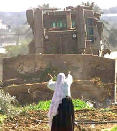 Palestinian woman challenges bulldozer.