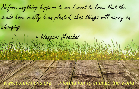 Wangari Maathai: Before anything happens to me I want to know that the seeds have really been planted, that things will carry on changing.